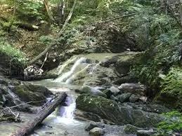 Bloomingdale Brook Waterfall Trail