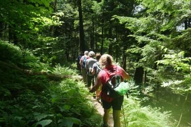 Dyken Pond Trail