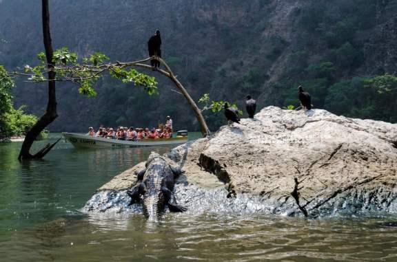 2013 April Chiapas MX-003-94