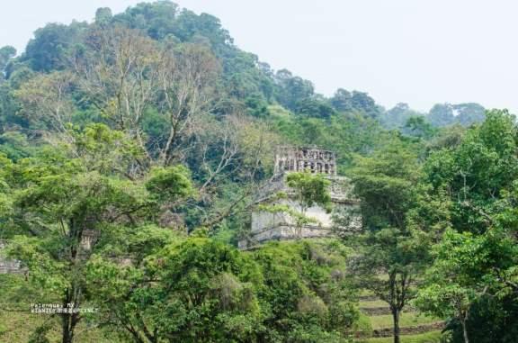 2013 April Chiapas MX-006-40