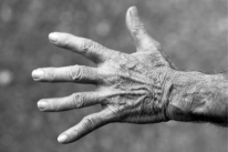 old-hand