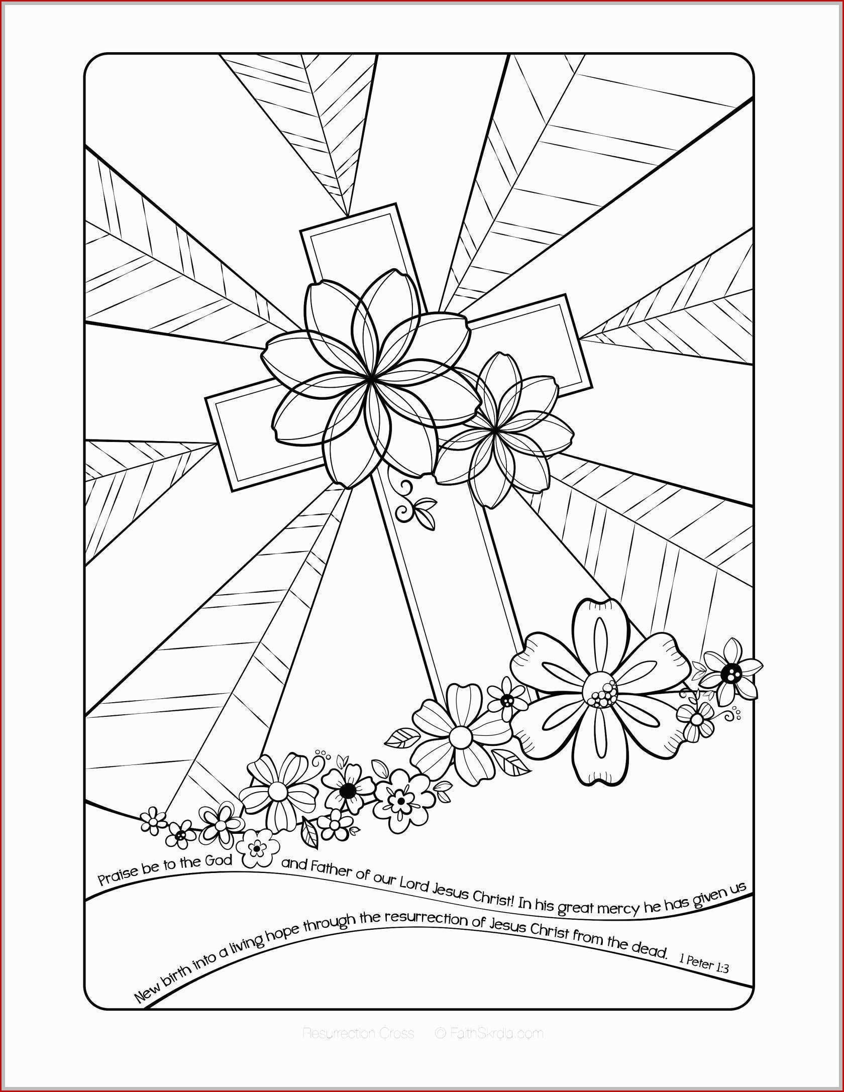 Polygons Worksheets 5th Grade