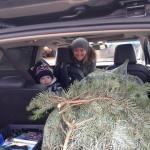 godberstravel, surviving Christmas with young children, Real Christmas Tree, Stoke Goldington Christmas Trees, Pick your own, PYO,