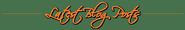 latest-blog-posts