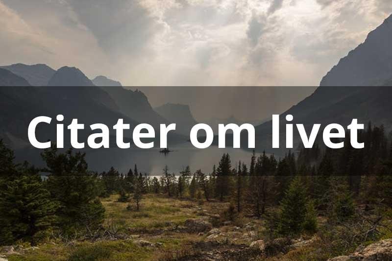 Citater Om Livet Find Gode Og Kloge Citater Om Livet Fra Hele