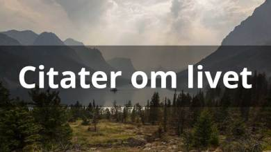 Photo of Citater om livet