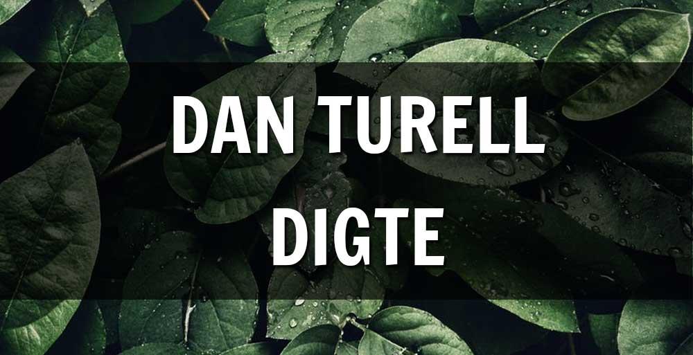 dan turtle digte