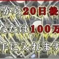 1000000_thumb.jpg