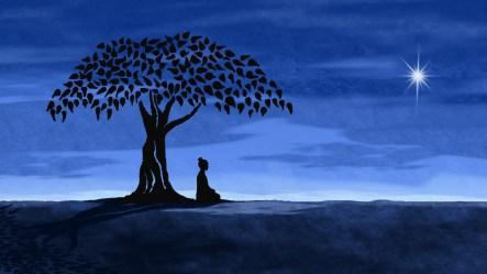 buddha bodhi tree