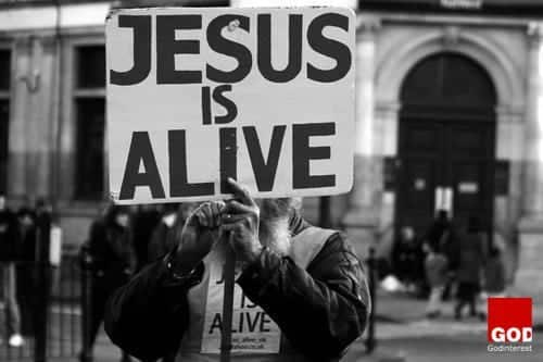What Would Jesus Do? Do You Really Want to Know?