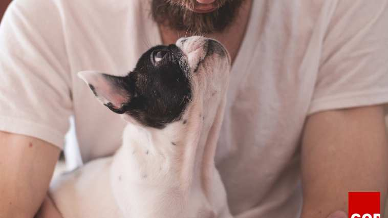 My Dog Brought Me Closer to God