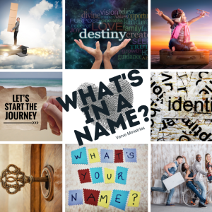 """9 image grid with text saying """"What's in a name?"""""""