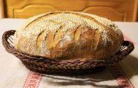 il pane di qualità