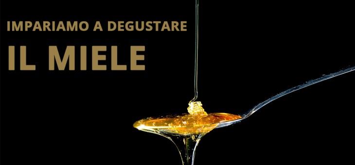 Impariamo a degustare il miele