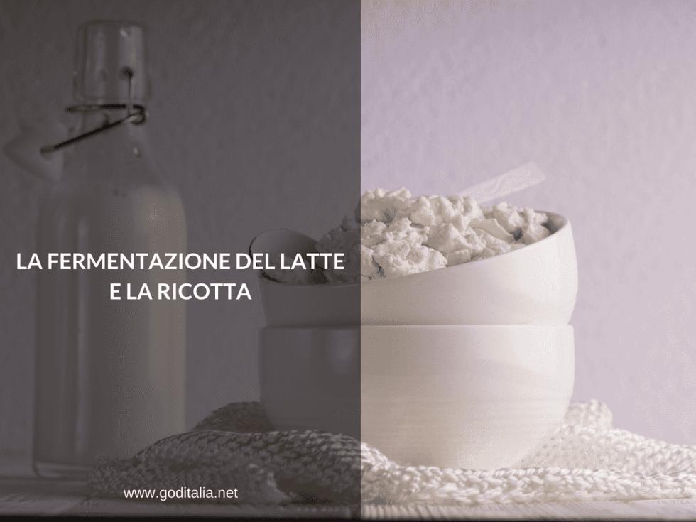 la fermentazione del latte e della ricotta