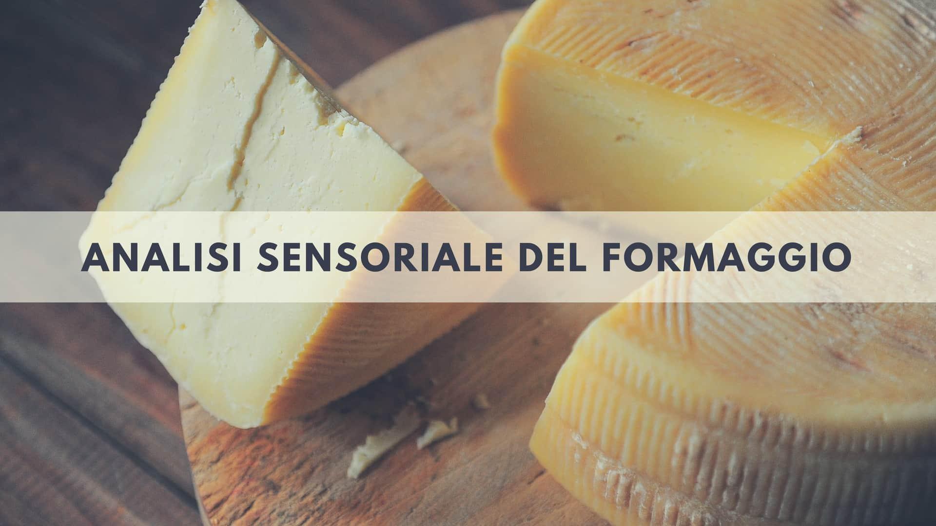 Uso della vista nell'analisi sensoriale del formaggio