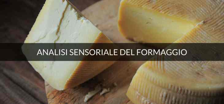 L'olfatto nell'esame sensoriale del formaggio