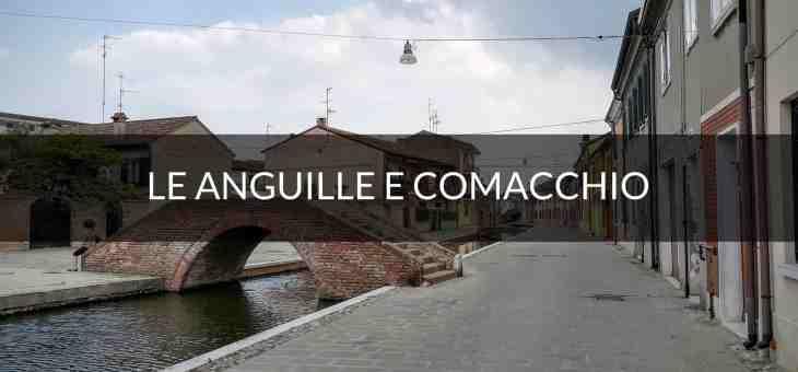 La storia dell'anguilla marinata e delle valli di Comacchio