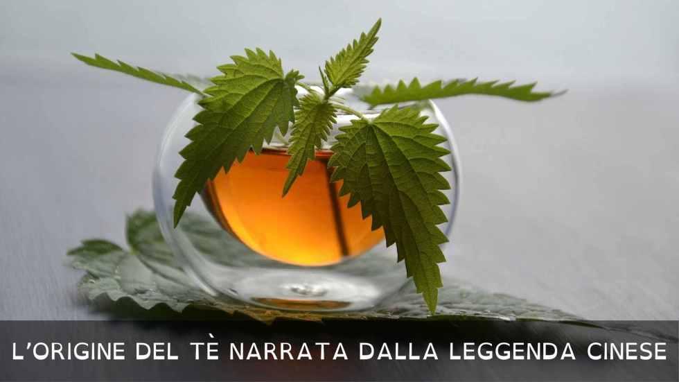 L'origine del tè narrata dalla leggenda cinese fino alla dinastia Tang