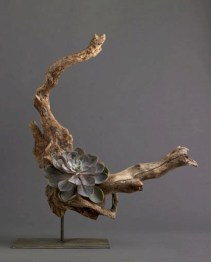 Ideas to arrange your succulent with driftwood 29