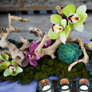 Ideas to arrange your succulent with driftwood 34