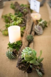 Ideas to arrange your succulent with driftwood 52