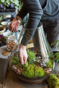 Amazing ways to planting terrarium 02
