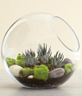 Amazing ways to planting terrarium 30