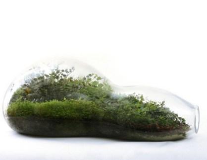 Amazing ways to planting terrarium 31