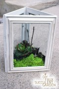 Amazing ways to planting terrarium 32
