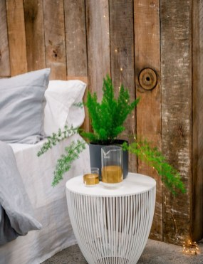 Best indoor plants you can grow without care 08