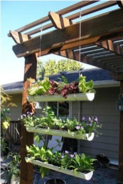 Creative ways to grow strawberry at your garden 20