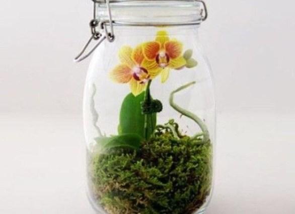 Diy indoor container water garden ideas 07