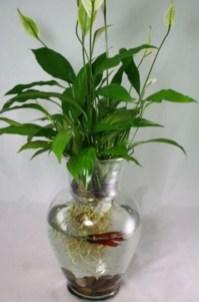 Diy indoor container water garden ideas 12