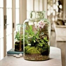 Diy indoor container water garden ideas 18