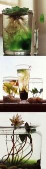 Diy indoor container water garden ideas 20