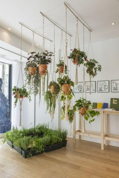 indoor hanging garden ideas 41 DIY Indoor Hanging Planters - GODIYGO.COM
