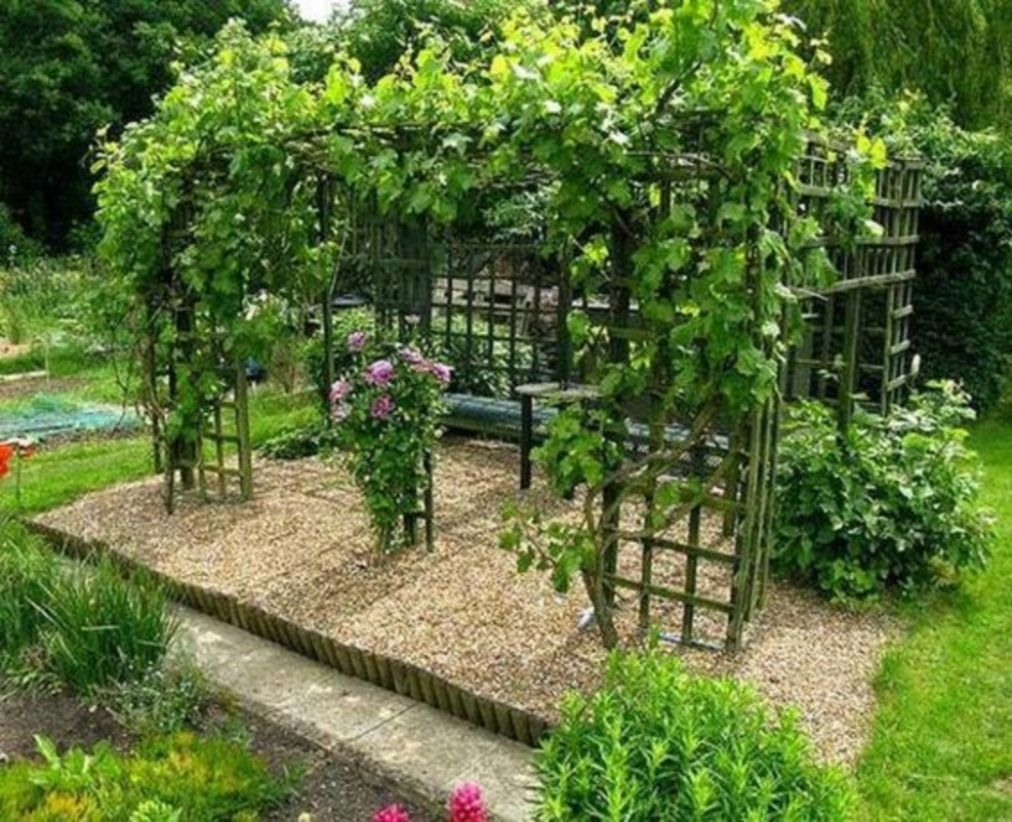 Smart backyard landscaping ideas with small garden designs turn outdoor living spaces into gorgeous summer resorts
