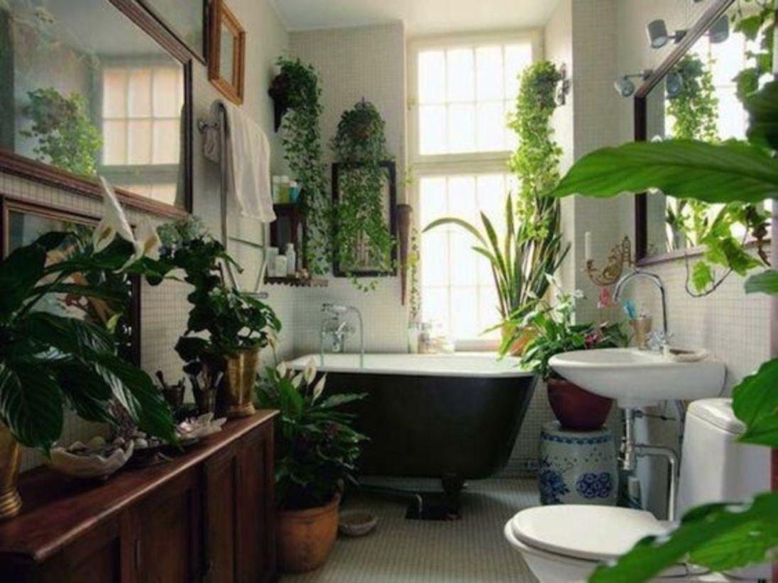 Stylish houseplant display idea for bathroom