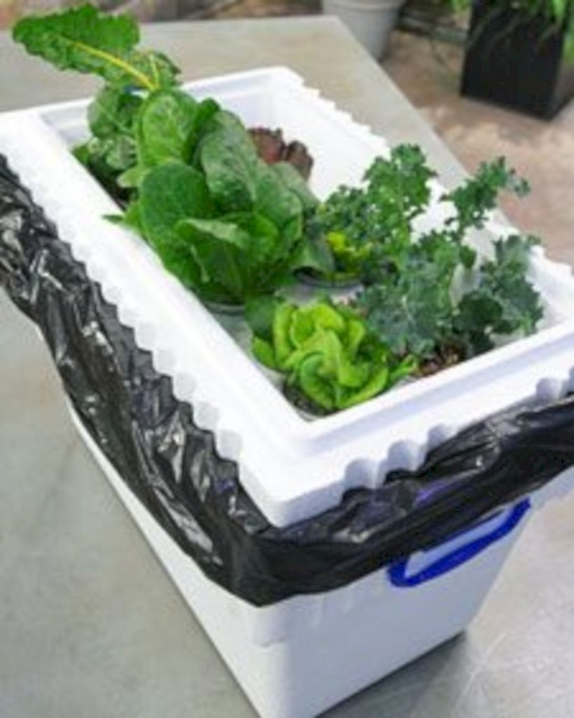 39 DIY Hydroponic Gardens for Your Small House - GODIYGO.COM