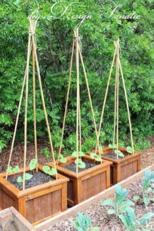 Diy hydroponic gardens for your small house 21