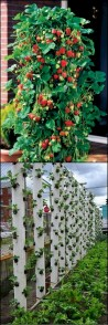 Diy hydroponic gardens for your small house 23