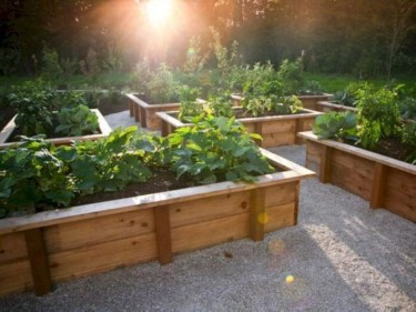 Easy to make diy raised garden beds ideas 34