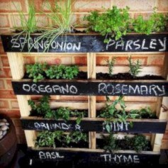 Great indoor herb garden ideas for healthy life 05