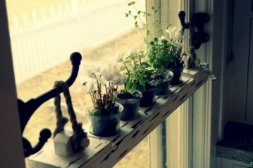 Great indoor herb garden ideas for healthy life 09