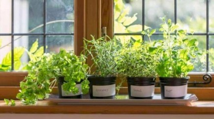 Great indoor herb garden ideas for healthy life 26