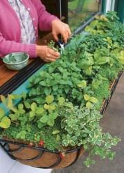 Lovely diy garden decor ideas you will love 09