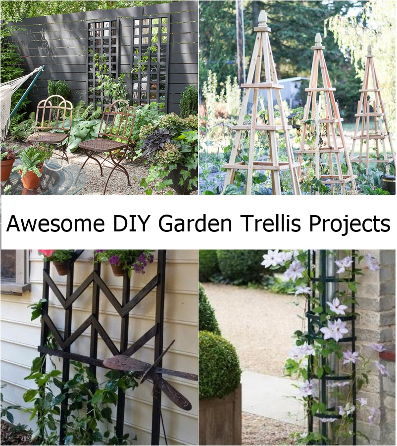 Awesome diy garden trellis projects godiygo com for Epic diy projects