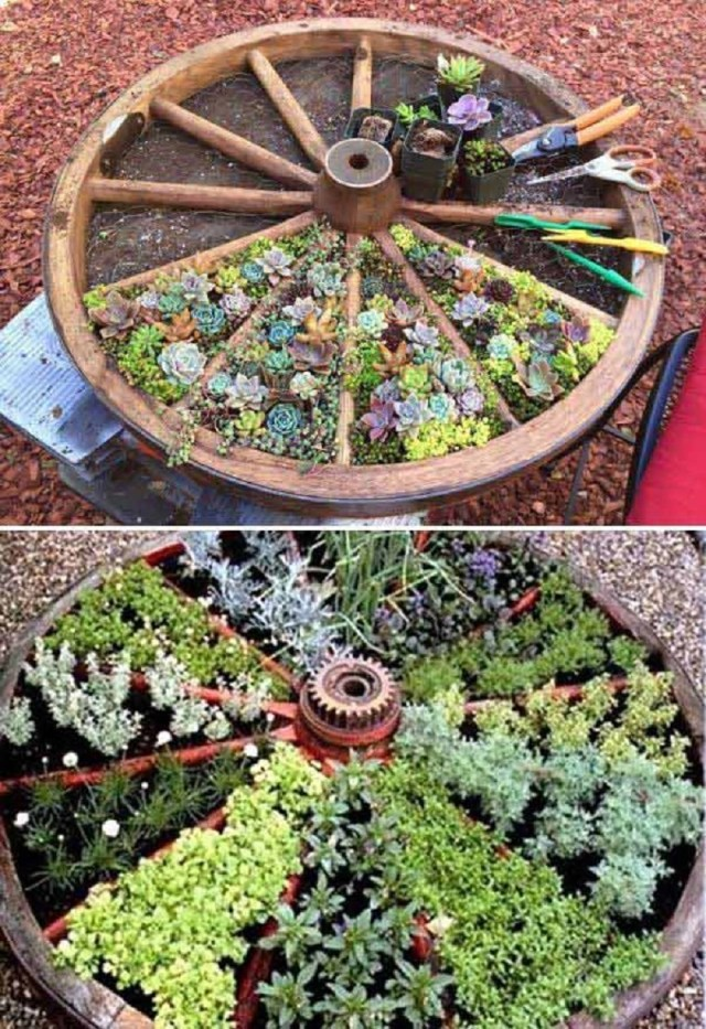 Old wagon wheel garden bed