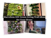 Marvelous diy green liviMarvelous diy green living wall ideas for your home